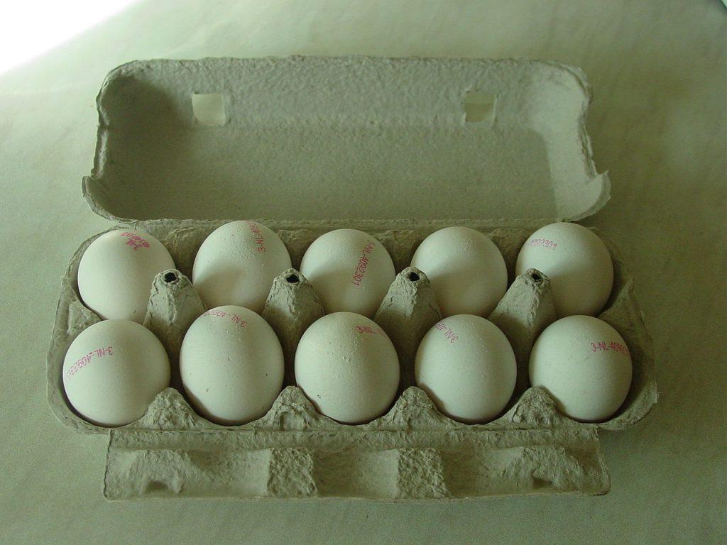 cara menjalankan bisnis telur asin