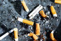 peluang bisnis rokok murah