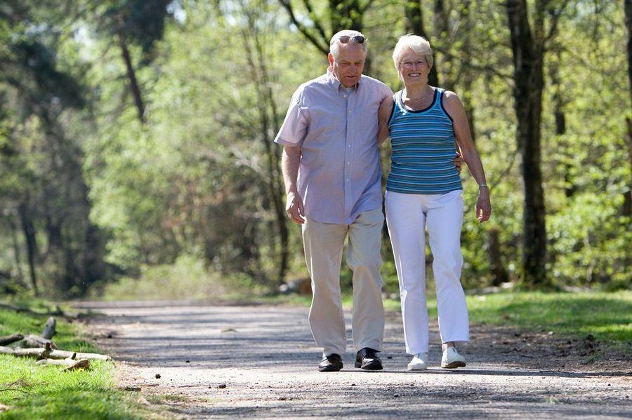 Peluang Usaha Untuk Pensiunan