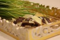 cara membuat sampo alami dengan mudah