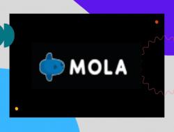 Mola TV : Harga, Cara Beli Paket Mola TV di HP & Desktop